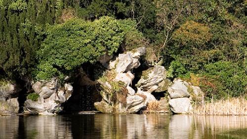 יער בולון (צילום: shutterstock)