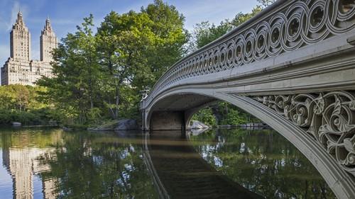 רומנטיקה נוטפת בסנטרל פארק (צילום: shutterstock)