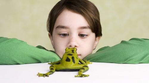 ויתרו על הצעצוע לטובת הכלבלבצילום: שאטרסטוק