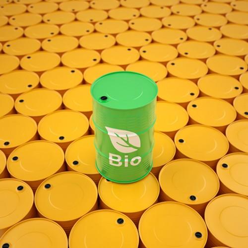 ממצאי המחקר עשויים לעזור להקטין את עלות הפקת הדלק הביולוגיצילום: שאטרסטוק