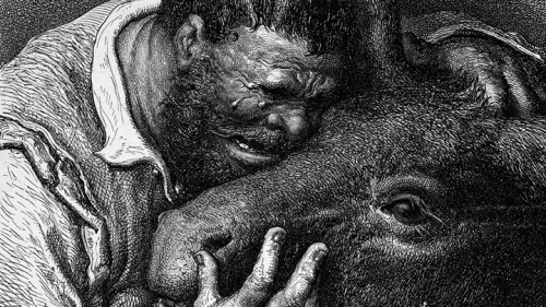 """תמונה של דורה. מתוך הספר """"תמונות של בשר"""""""