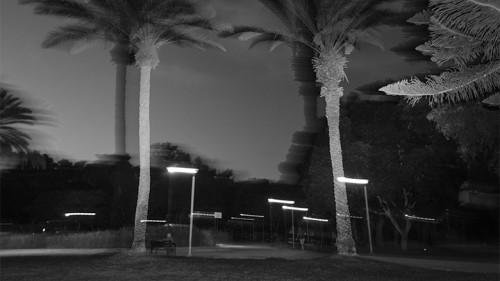 גן מאיר. צילום: יולי גורודינסקי