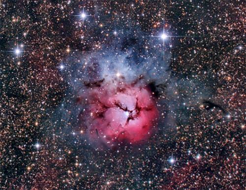 ערפילית הטריפיד – עשויה בעיקר מענני גז מימן, שבתוכם נוצרים כוכבים חדשיםצילום: מיכאל צוקראן