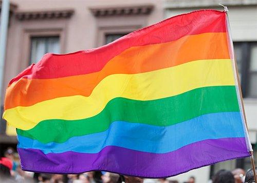 חלק מהמשפחה. דגל הגאווה(צילום: Shutterstock)