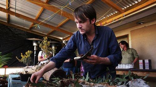 האיש שהתחיל את הגל. רנה רדזפי במסעדת נומה. צילום: Getty Images