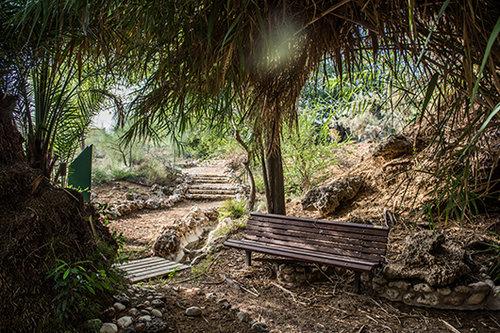 הגן הבוטני. צילום: נמרוד סונדרס
