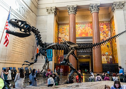 Natural History Museum. Photo by Shutterstock