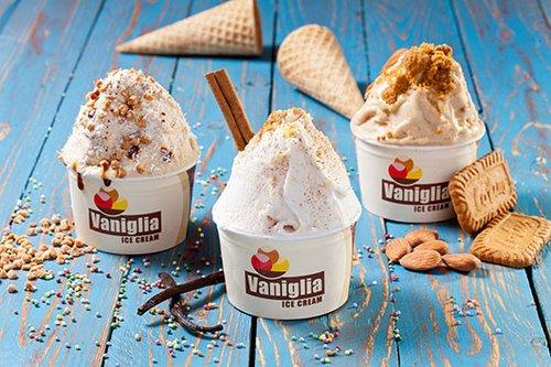 המרקם מושלם. גלידות טבעוניות ברשת וניליה (צילום: בועז לביא)
