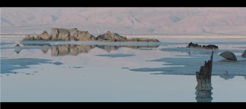 מתוך The Fall Live at the Dead Sea, טייני פינגרז