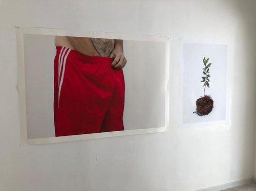 הצילום של יעל מאירי בגלריה אינדי (צילום: באדיבות הגלריה)